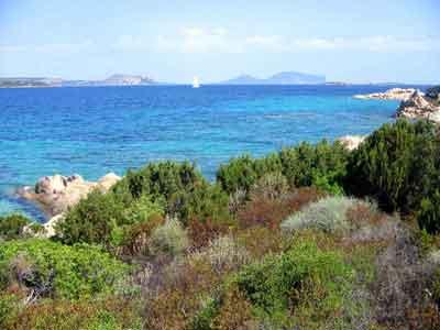 mare in Sardegna vacanze san Teodoro