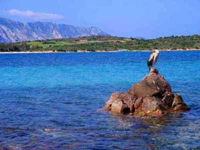 immagini mare in Sardegna